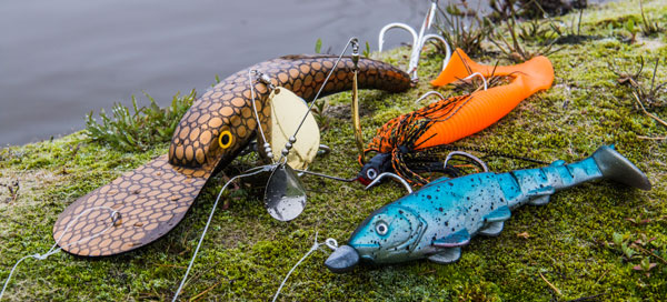 The 5 Best Lure Types for Murray Cod – Social Fishing