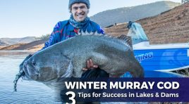 Winter Murray Cod: 3 Tips for Success in Lakes & Dams