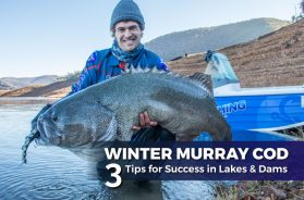 winter-murray-cod-lakes-dams
