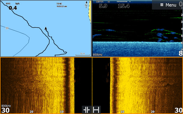 Screenshot of a fish finder/sounder that shows baitfish
