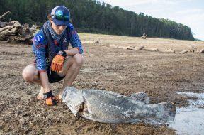 blowering-dam-fish-kills-2019