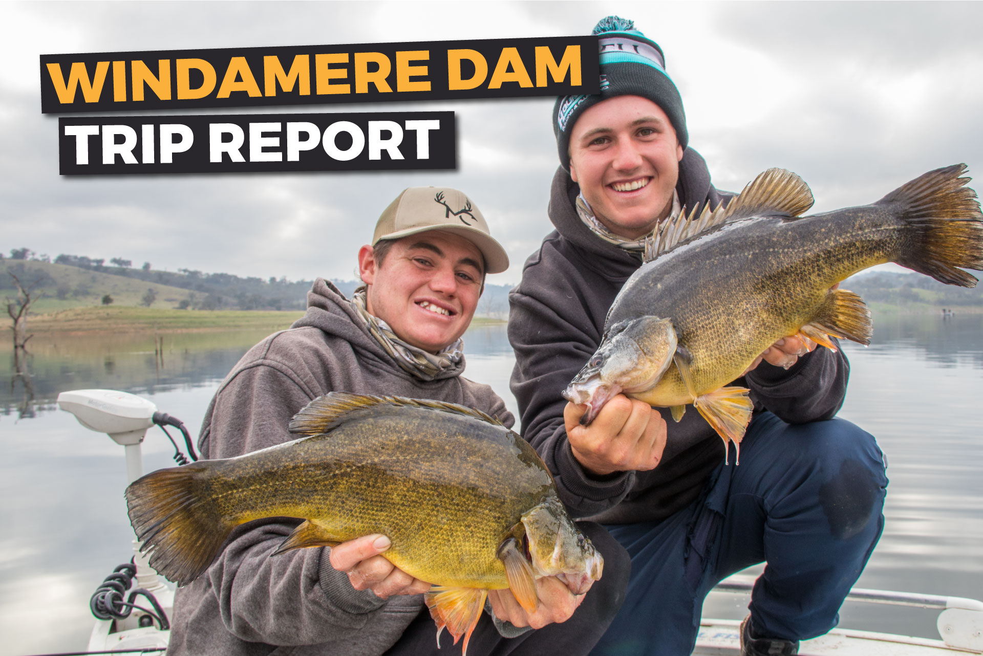 How We Caught 117 Golden Perch On Our Trip To Windamere…
