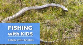 Fishing with Kids: Safety from Snakes