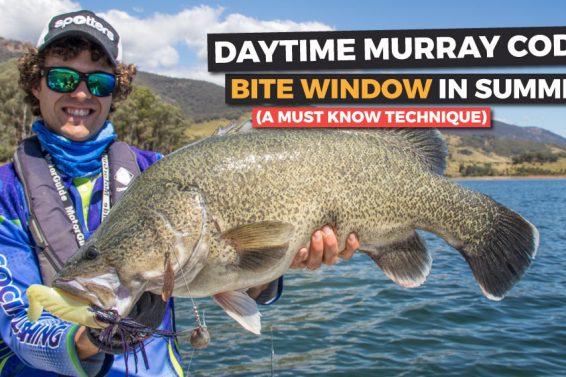 summer-murray-cod-fishing