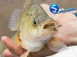 ep52-bait-fishing-freshwater